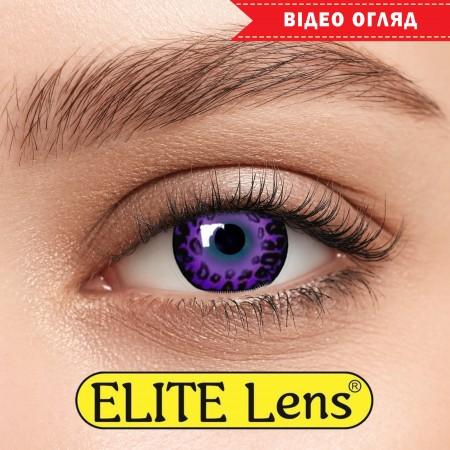Цветные линзы ELITE Lens модель «Фиолет Лео»